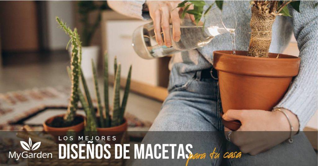 macetas_para_tu_casa